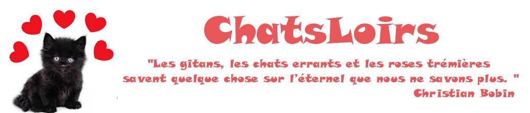 Les ChatsLoirs